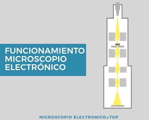 Funcionamiento del microscopio electrónico
