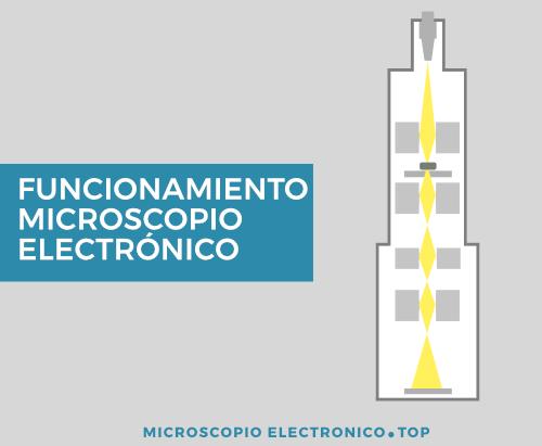 ¿Cómo funciona el microscopio electrónico?