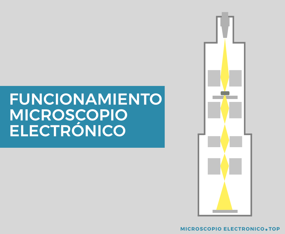 funcionamiento-microscopio-electronico
