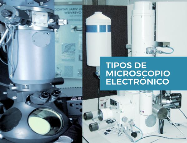 Tipos de microscopio electrónico